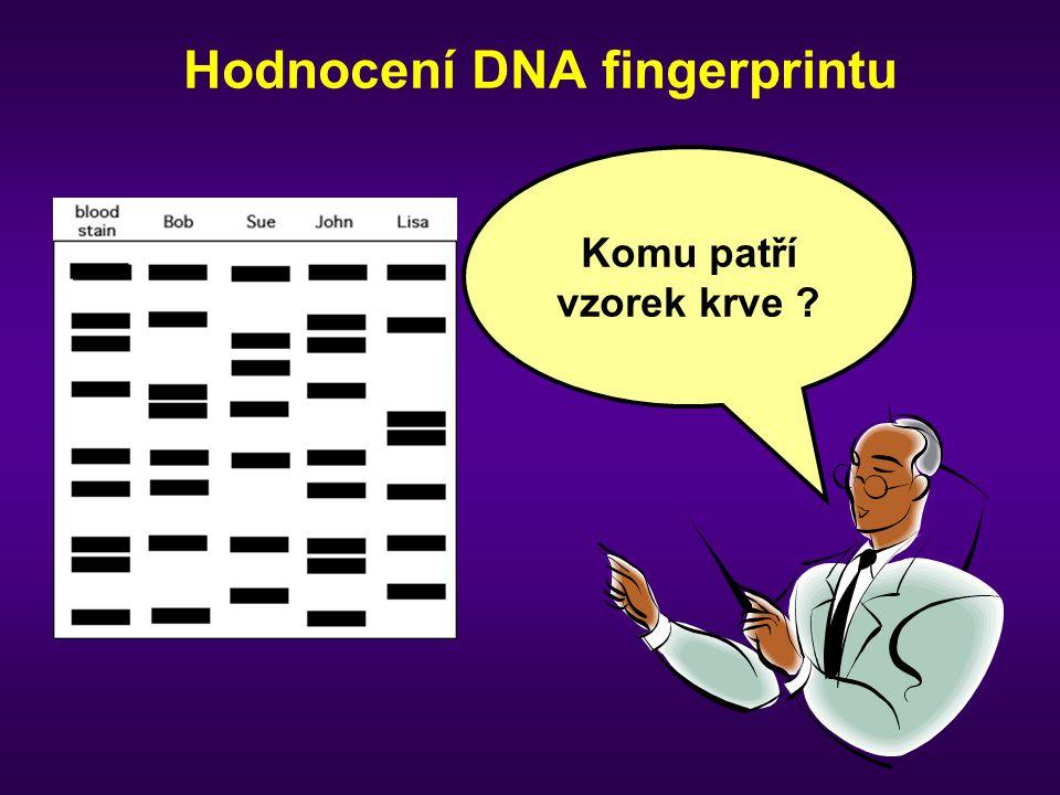 Hodnocení DNA fingerprintu
