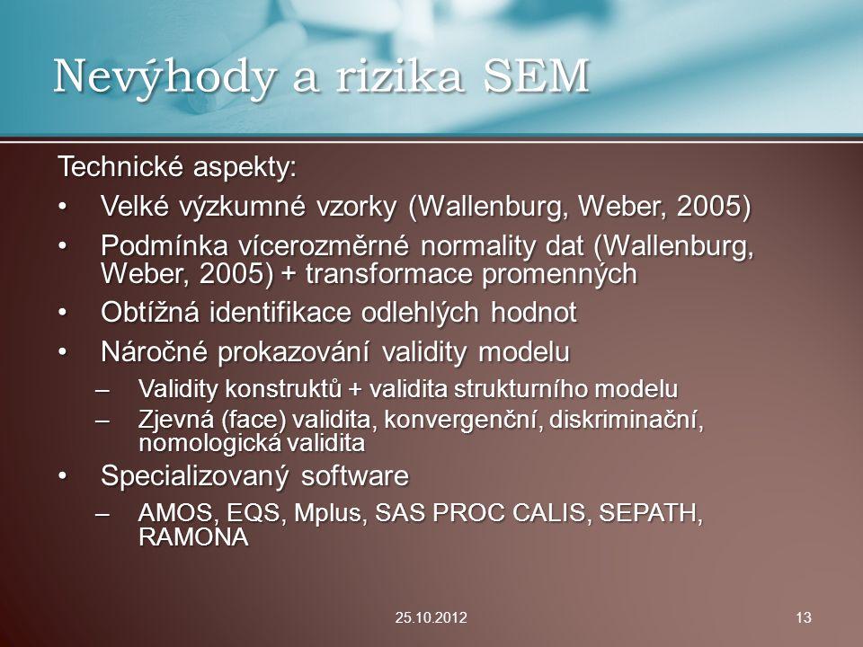 Nevýhody a rizika SEM Technické aspekty:
