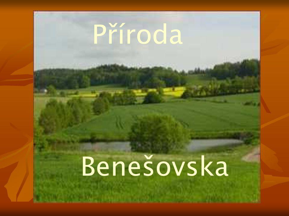 Příroda Benešovska