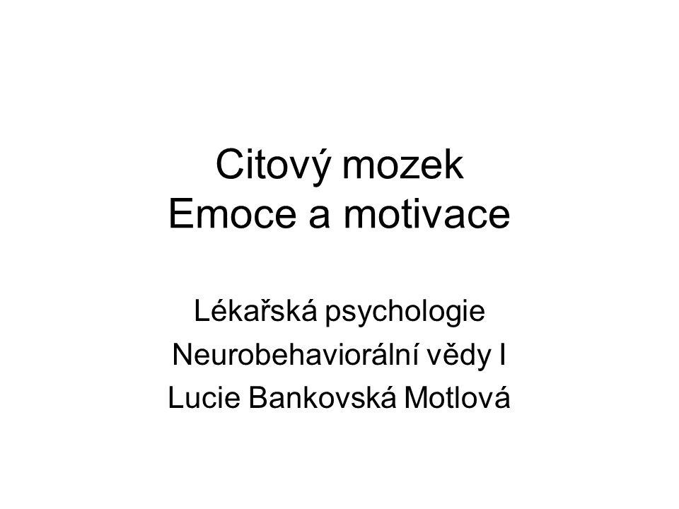Citový mozek Emoce a motivace