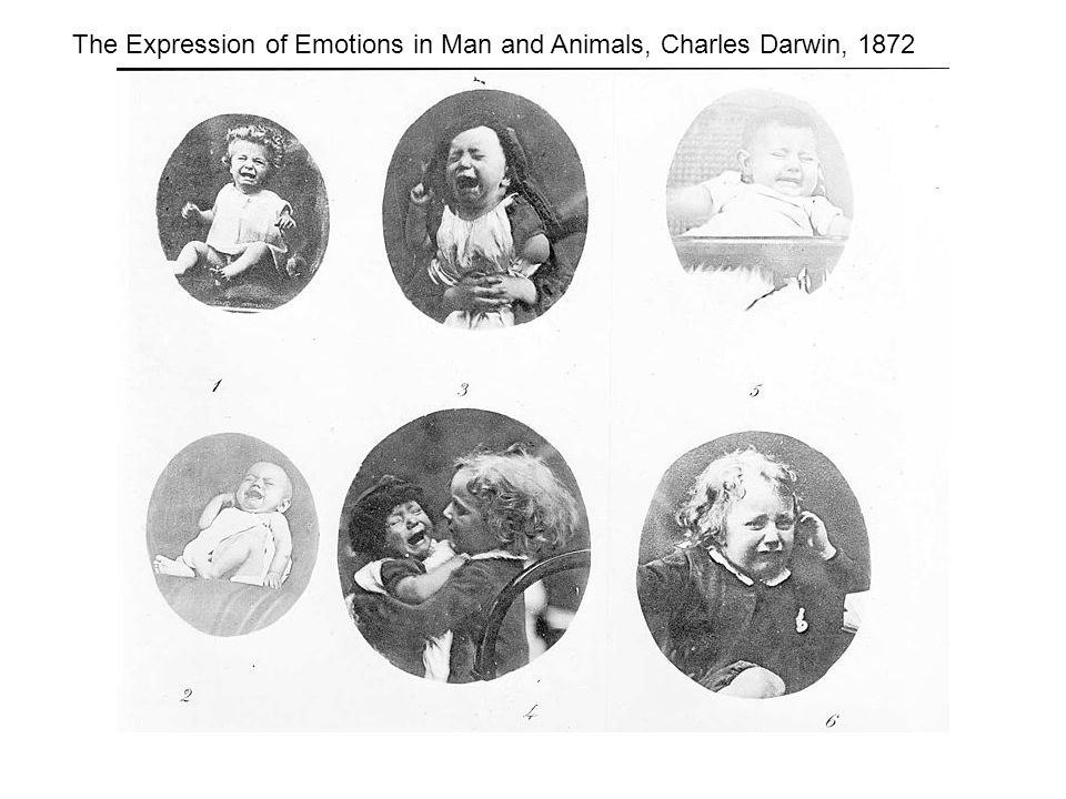 The Expression of Emotions in Man and Animals, Charles Darwin, 1872