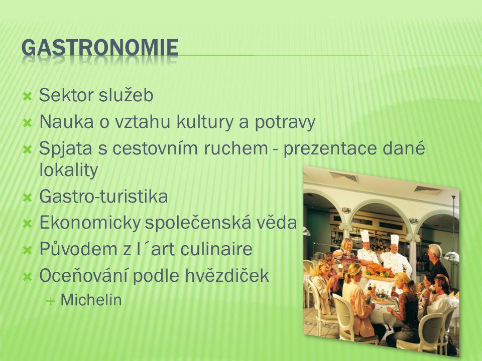 Gastronomie Sektor služeb Nauka o vztahu kultury a potravy