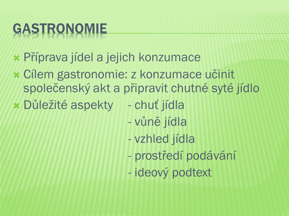 Gastronomie Příprava jídel a jejich konzumace