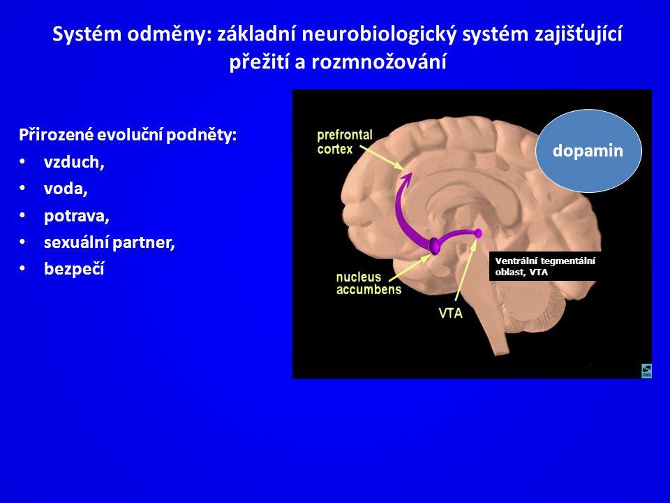 Systém odměny: základní neurobiologický systém zajišťující přežití a rozmnožování