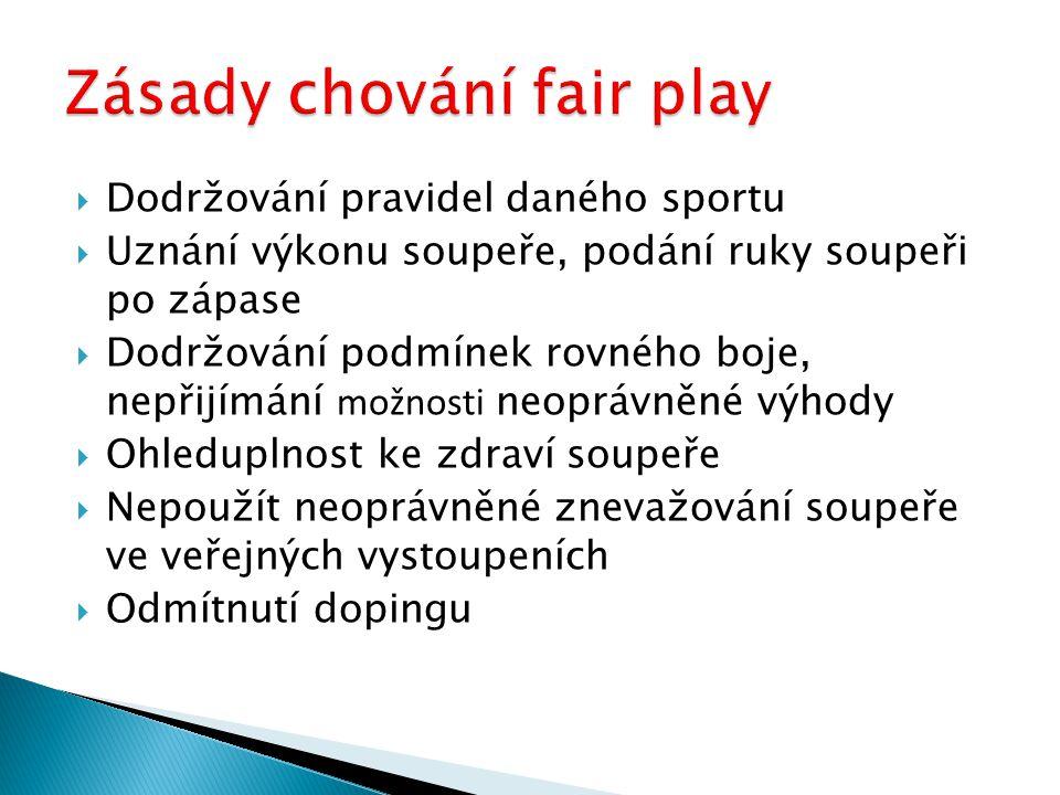 Zásady chování fair play