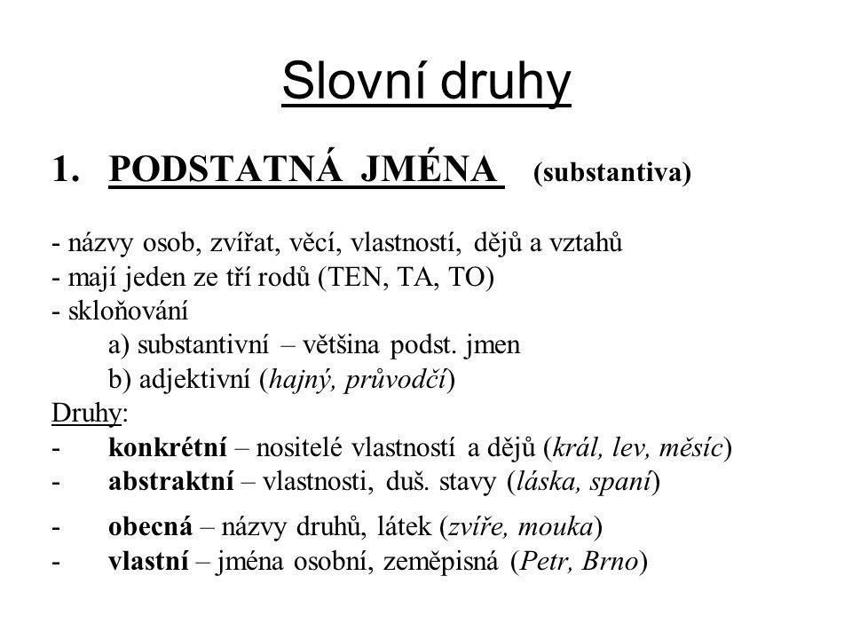 Slovní druhy PODSTATNÁ JMÉNA (substantiva)