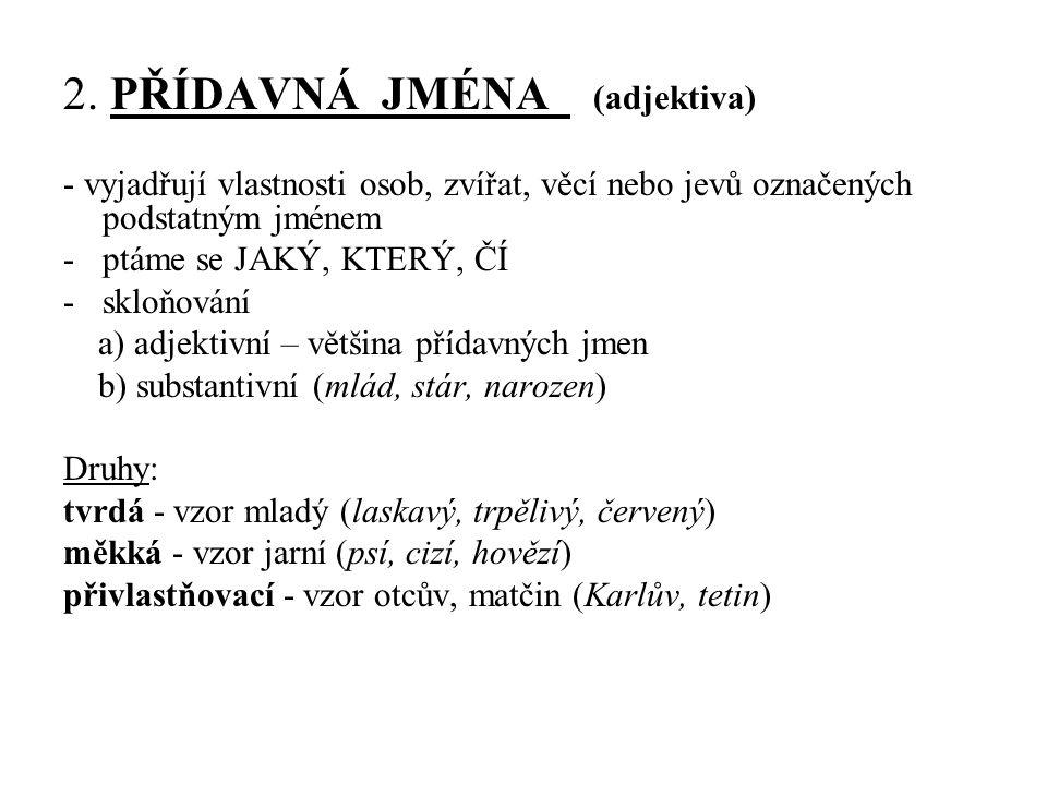 2. PŘÍDAVNÁ JMÉNA (adjektiva)