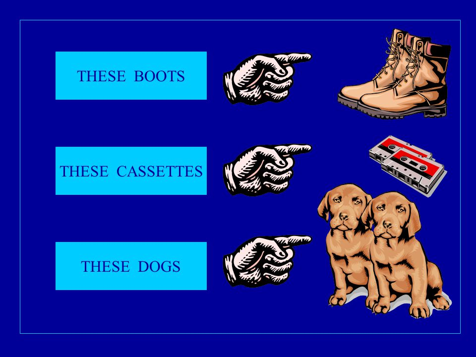 THESE BOOTS THESE CASSETTES THESE DOGS