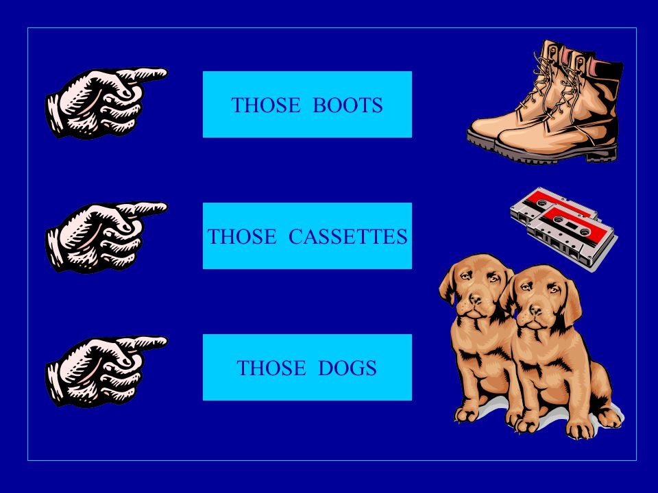 THOSE BOOTS THOSE CASSETTES THOSE DOGS