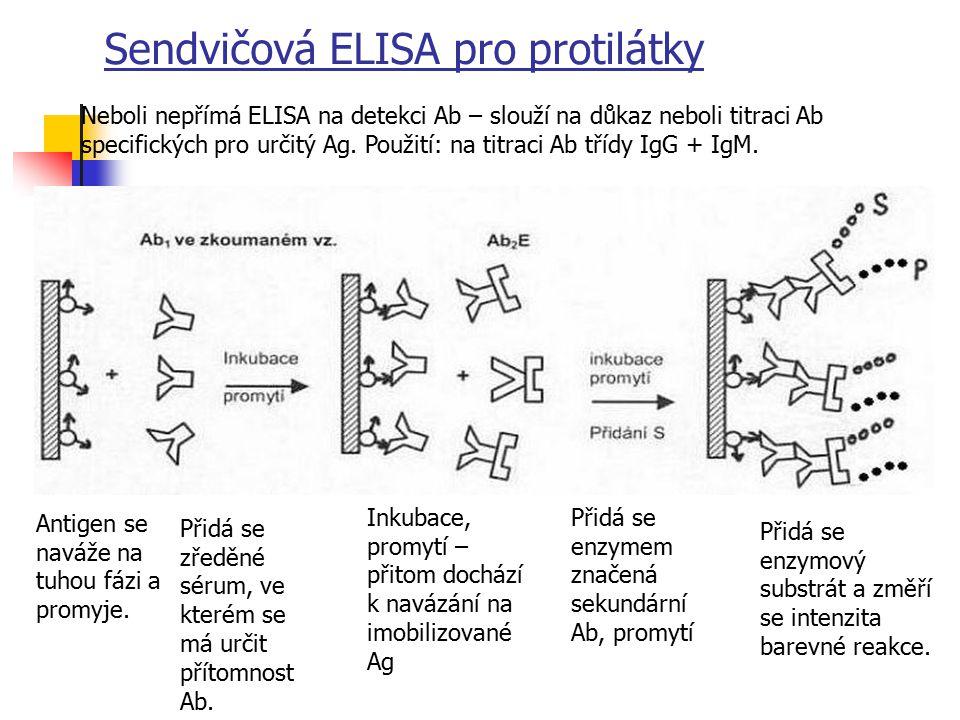 Sendvičová ELISA pro protilátky