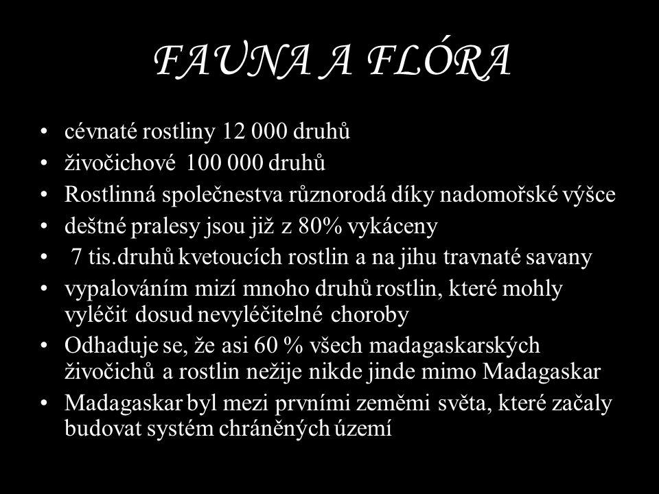 FAUNA A FLÓRA cévnaté rostliny 12 000 druhů živočichové 100 000 druhů