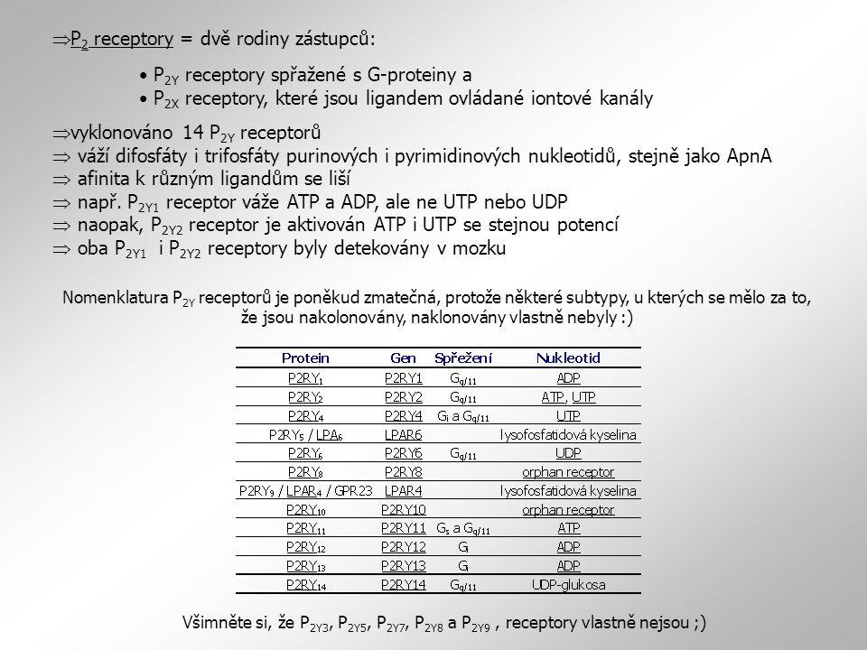 P2 receptory = dvě rodiny zástupců: