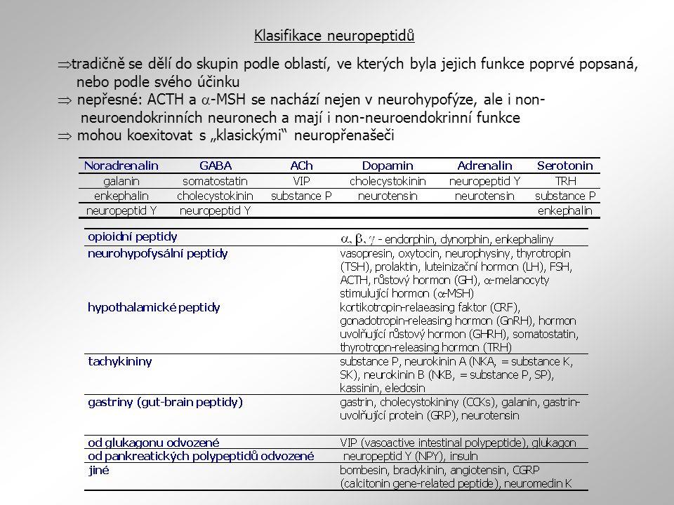 Klasifikace neuropeptidů