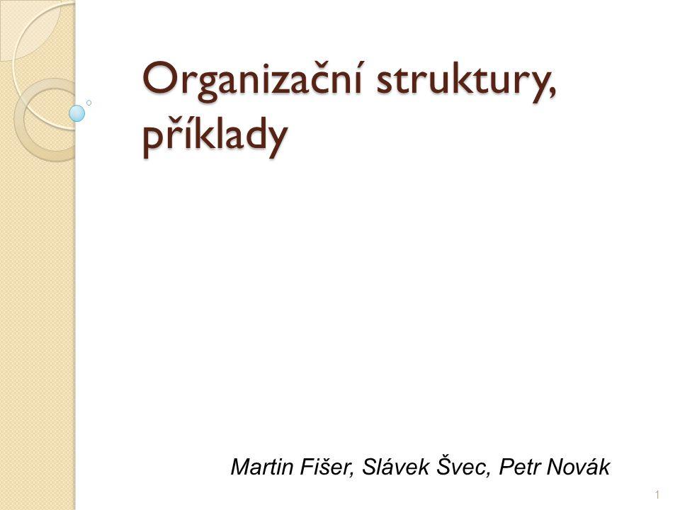 Organizační struktury, příklady