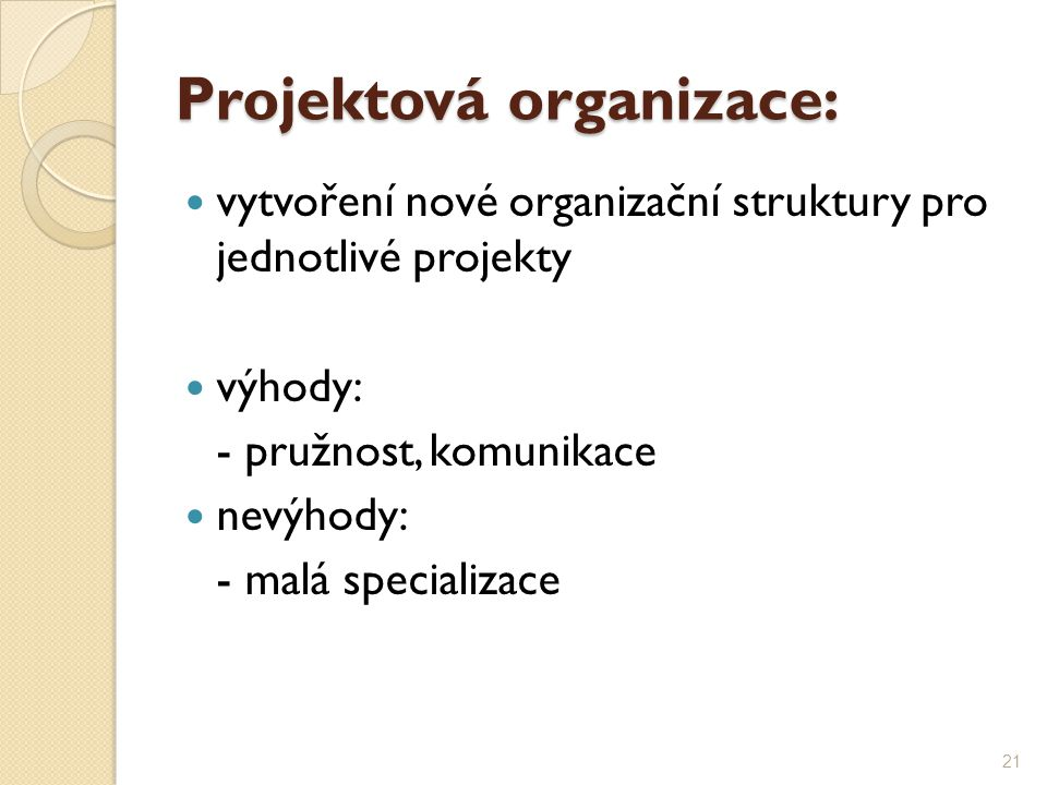 Projektová organizace: