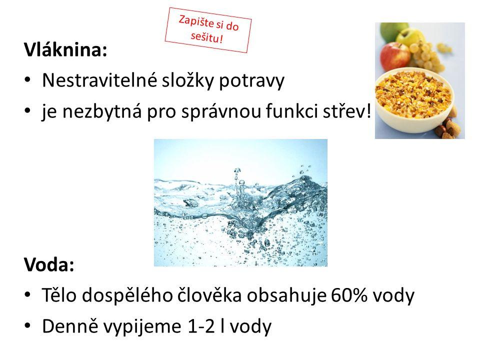 Nestravitelné složky potravy je nezbytná pro správnou funkci střev!