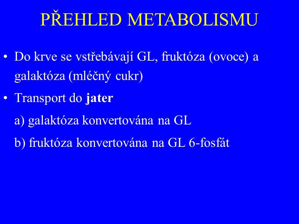 PŘEHLED METABOLISMU Do krve se vstřebávají GL, fruktóza (ovoce) a galaktóza (mléčný cukr) Transport do jater.