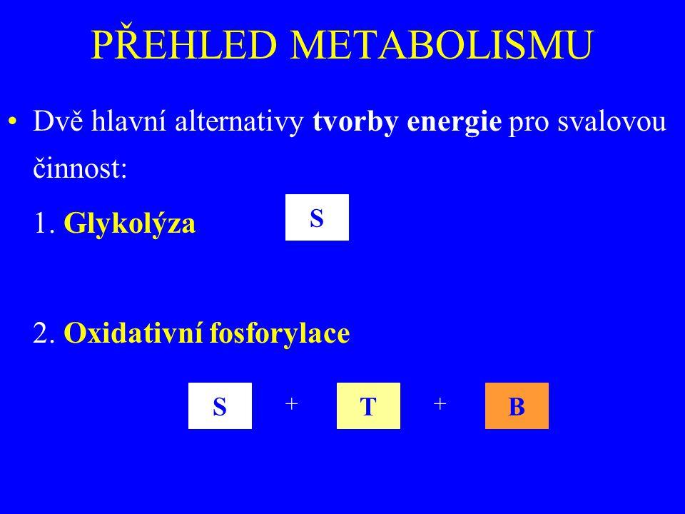 PŘEHLED METABOLISMU Dvě hlavní alternativy tvorby energie pro svalovou činnost: 1. Glykolýza. 2. Oxidativní fosforylace.