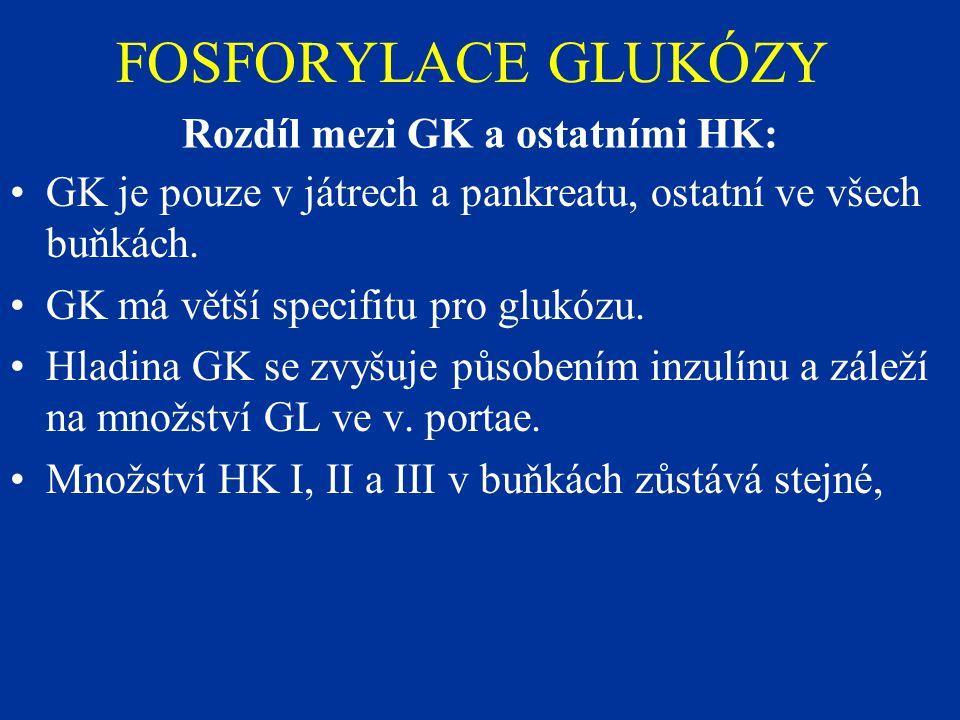 Rozdíl mezi GK a ostatními HK: