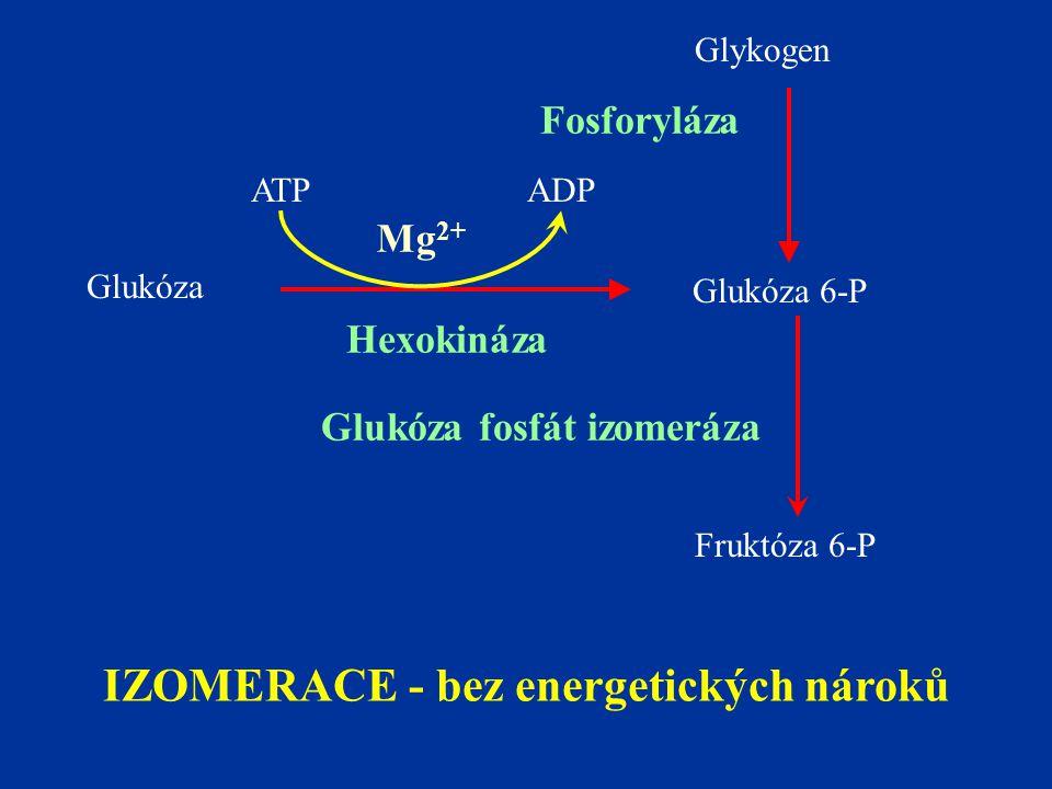 IZOMERACE - bez energetických nároků