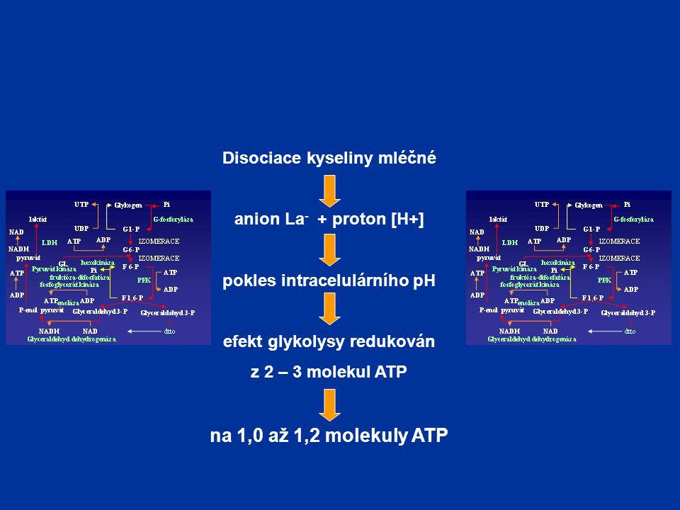 na 1,0 až 1,2 molekuly ATP Disociace kyseliny mléčné