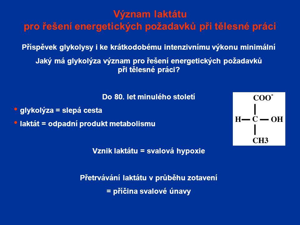 Význam laktátu pro řešení energetických požadavků při tělesné práci