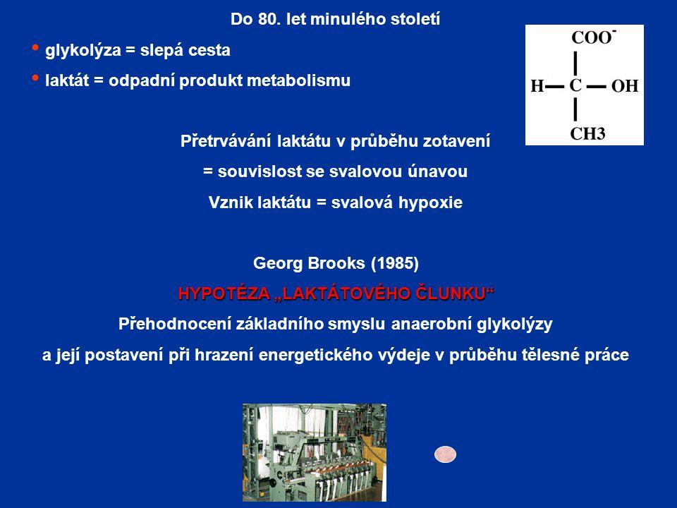 Do 80. let minulého století glykolýza = slepá cesta