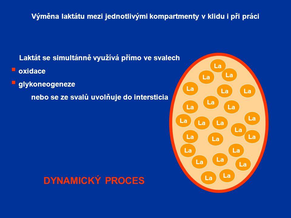 dynamický proces DYNAMICKÝ PROCES