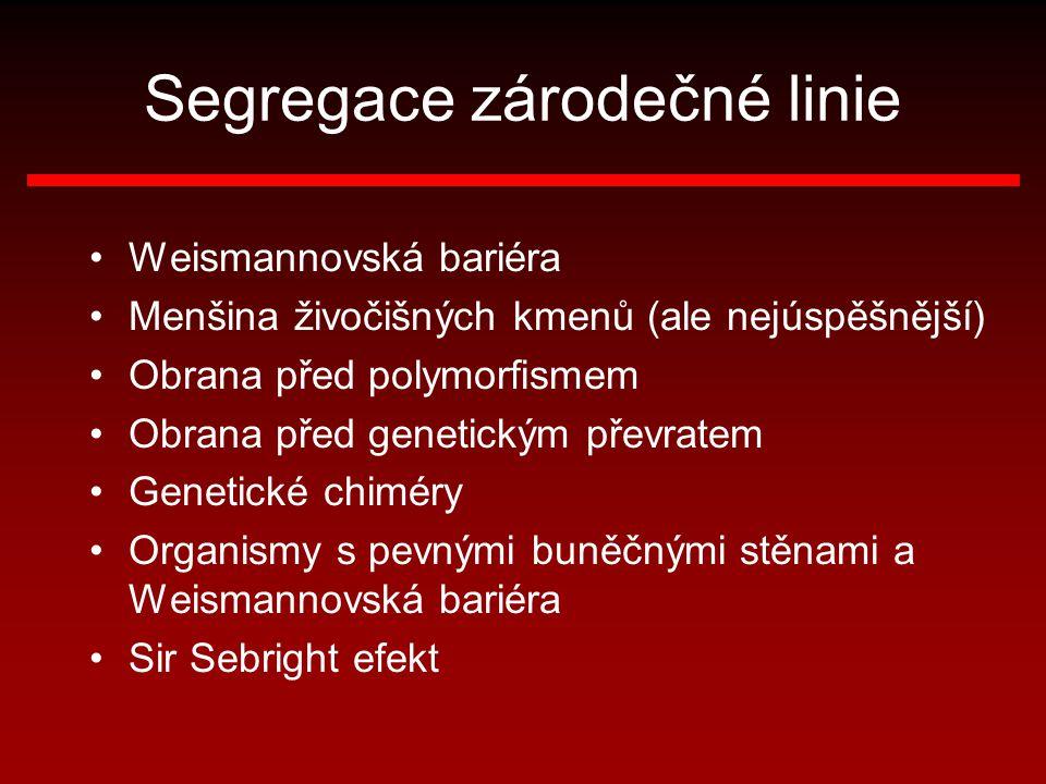 Segregace zárodečné linie