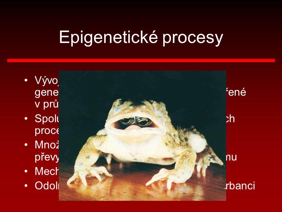 Epigenetické procesy Vývoj (vývin) organismu neřídí přímo genetická informace, ale systémy vytvořené v průběhu tohoto vývoje.