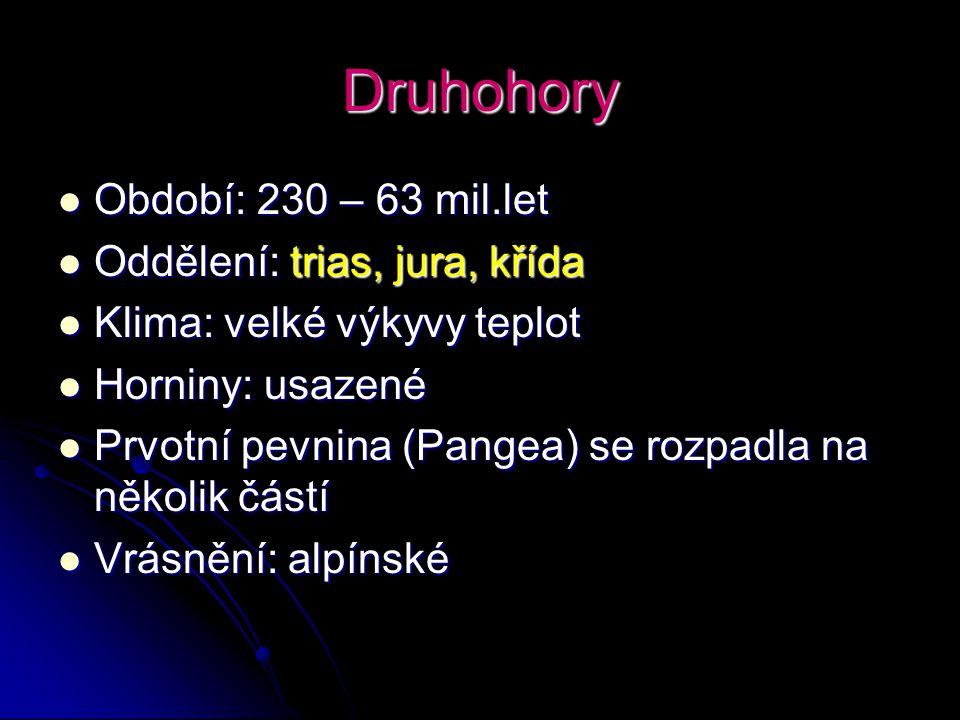 Druhohory Období: 230 – 63 mil.let Oddělení: trias, jura, křída