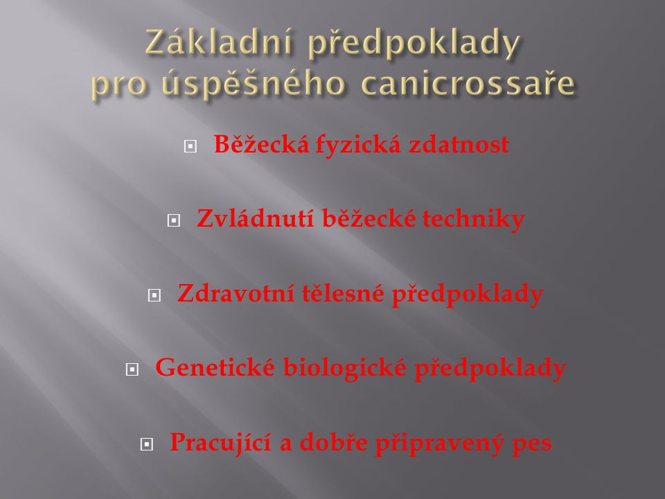 Základní předpoklady pro úspěšného canicrossaře