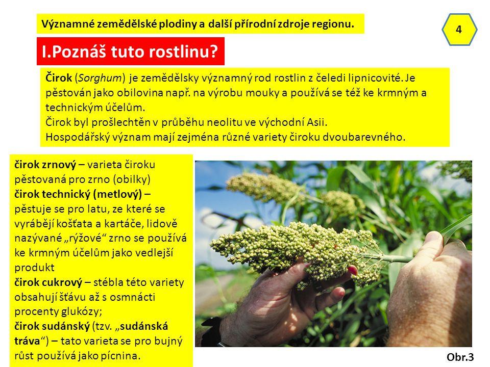 Významné zemědělské plodiny a další přírodní zdroje regionu.