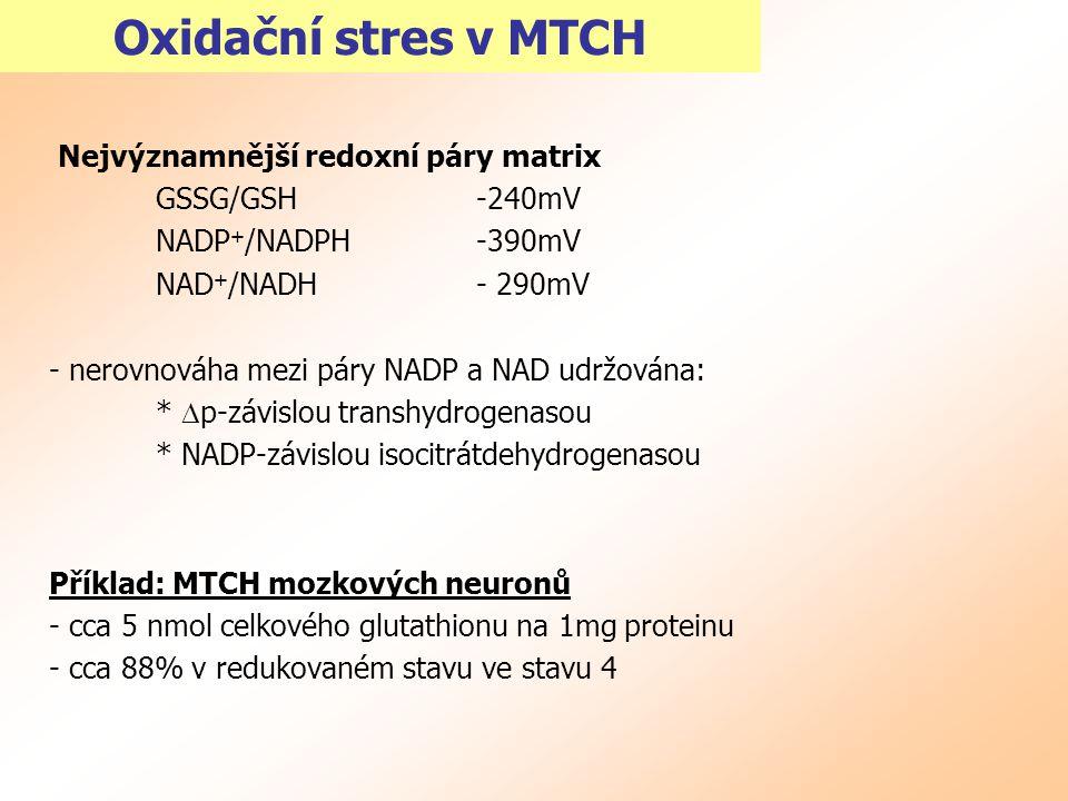 Oxidační stres v MTCH Nejvýznamnější redoxní páry matrix