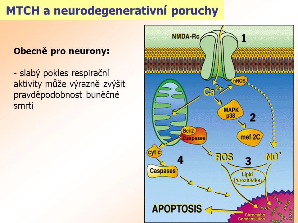 MTCH a neurodegenerativní poruchy