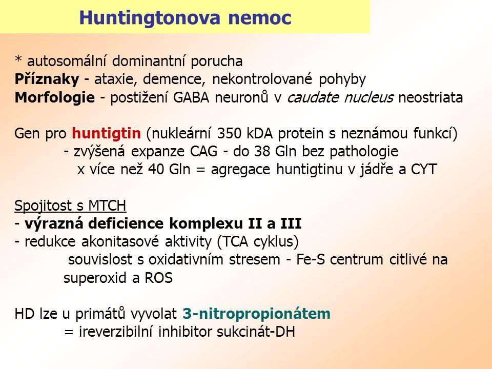 Huntingtonova nemoc * autosomální dominantní porucha