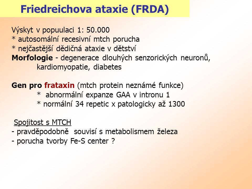Friedreichova ataxie (FRDA)