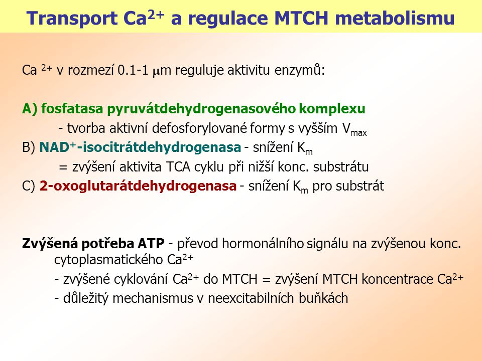 Transport Ca2+ a regulace MTCH metabolismu