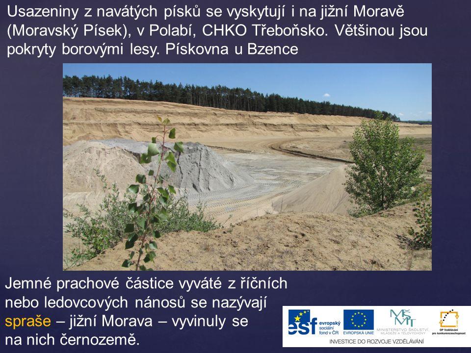 Usazeniny z navátých písků se vyskytují i na jižní Moravě (Moravský Písek), v Polabí, CHKO Třeboňsko. Většinou jsou pokryty borovými lesy. Pískovna u Bzence