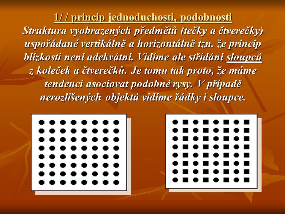 1/ / princip jednoduchosti, podobnosti Struktura vyobrazených předmětů (tečky a čtverečky) uspořádané vertikálně a horizontálně tzn.