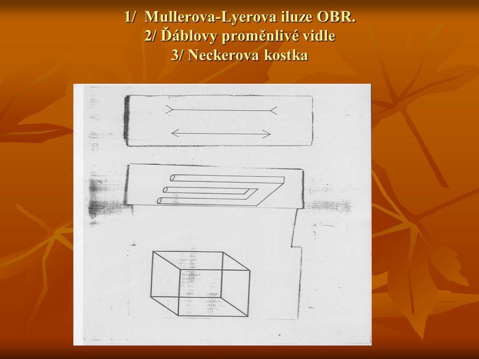 1/ Mullerova-Lyerova iluze OBR
