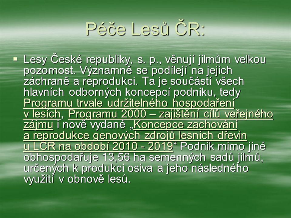 Péče Lesů ČR: