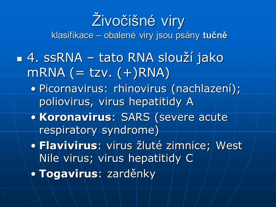 Živočišné viry klasifikace – obalené viry jsou psány tučně