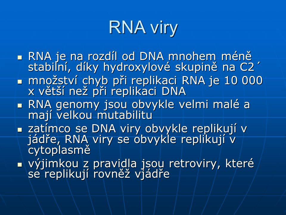 RNA viry RNA je na rozdíl od DNA mnohem méně stabilní, díky hydroxylové skupině na C2´
