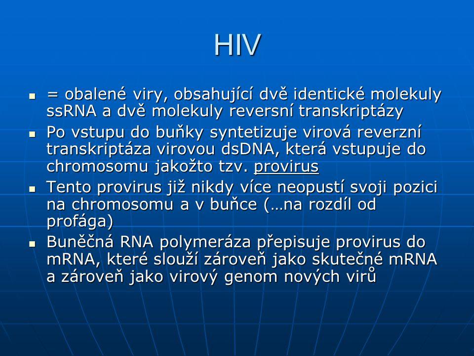 HIV = obalené viry, obsahující dvě identické molekuly ssRNA a dvě molekuly reversní transkriptázy.
