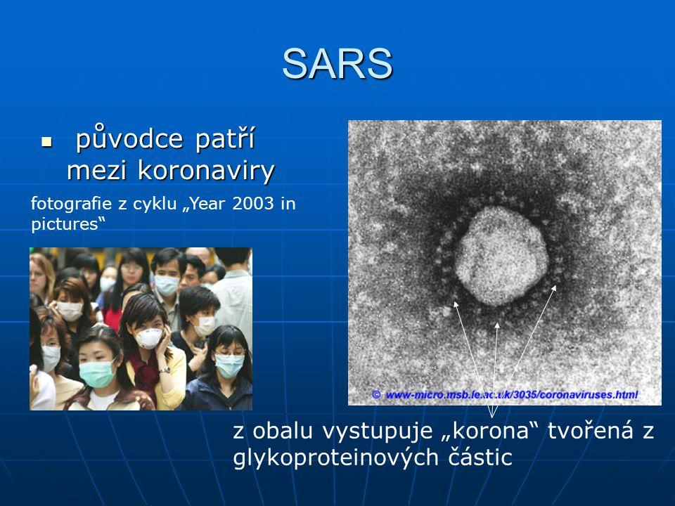 SARS původce patří mezi koronaviry