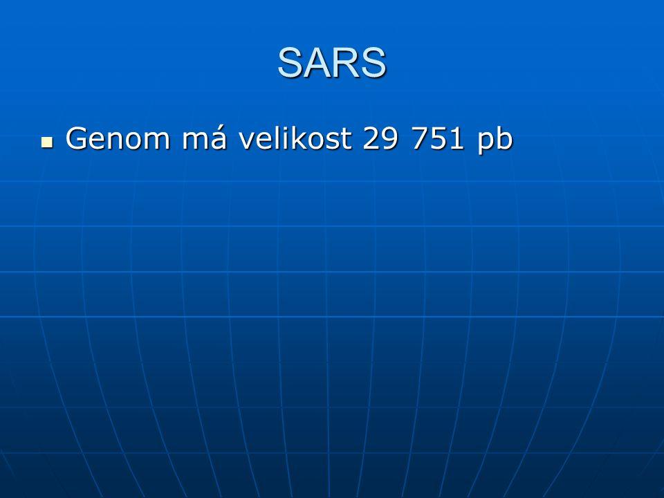 SARS Genom má velikost 29 751 pb