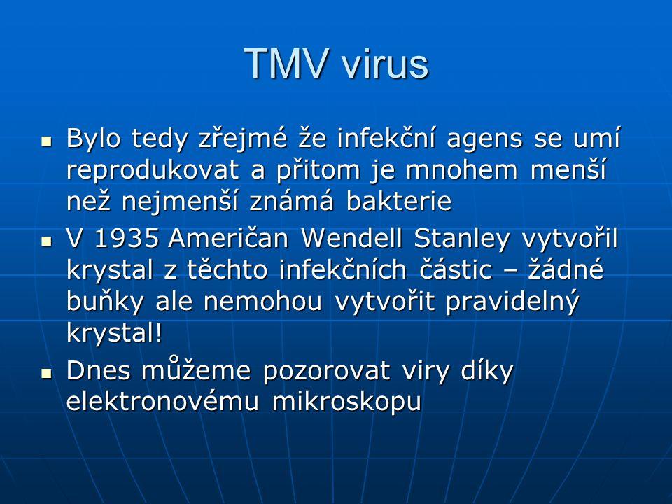 TMV virus Bylo tedy zřejmé že infekční agens se umí reprodukovat a přitom je mnohem menší než nejmenší známá bakterie.