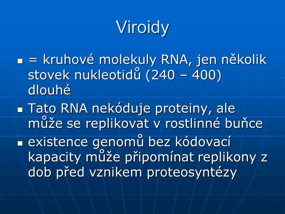 Viroidy = kruhové molekuly RNA, jen několik stovek nukleotidů (240 – 400) dlouhé.