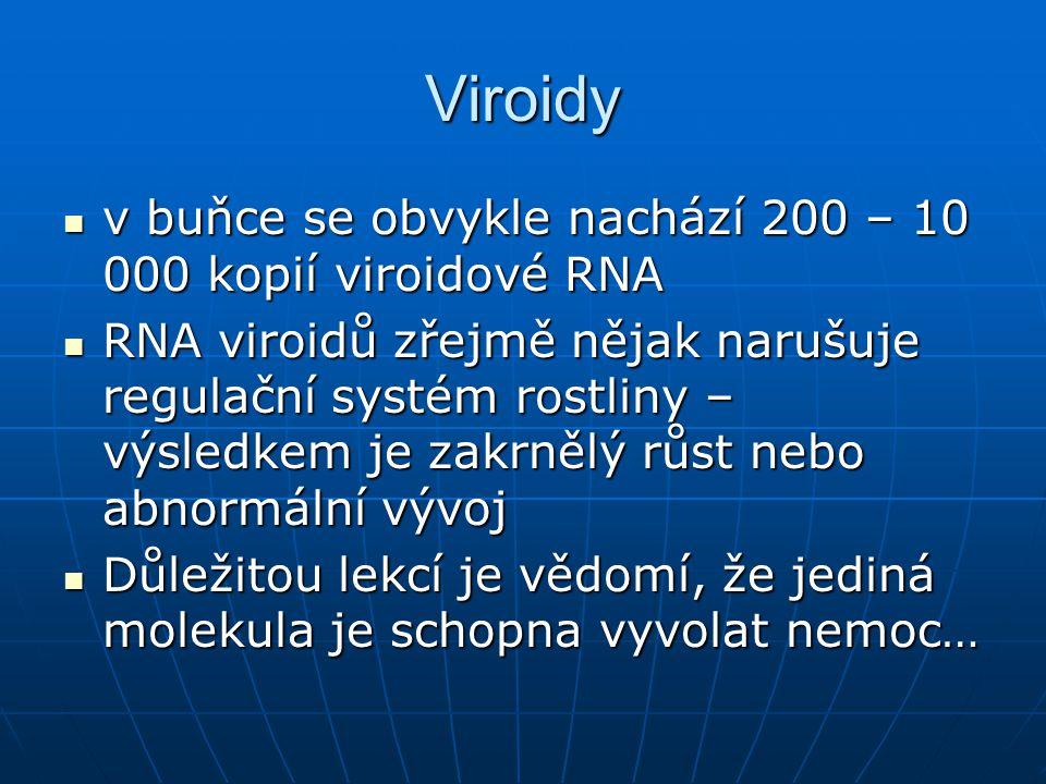 Viroidy v buňce se obvykle nachází 200 – 10 000 kopií viroidové RNA